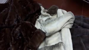 реставрация шуб в омске